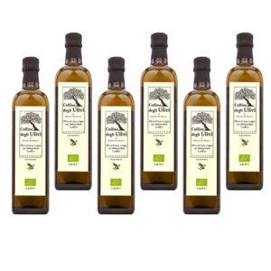 Bio Olivenöl Extra Vergine 6er Pack 0,75L